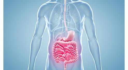 Günstiger Einfluss von Vitamin D bei chronisch-entzündlichen Darmerkrankungen