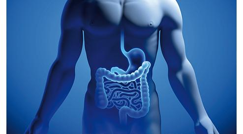 Neuerungen in der aktualisierten S3-Leitlinie zu Colitis ulcerosa (CU) und der Einsatz komplementärer Therapieverfahren