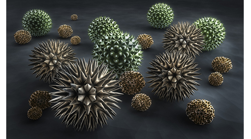 Immunsystem: Vitamin D als wichtiger Modulator
