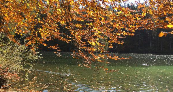 Badersee im Herbst
