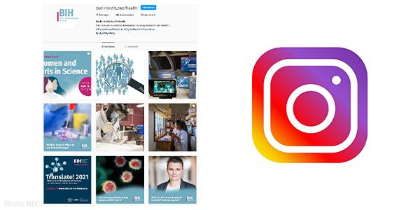Screenshot BIH Instagram Account