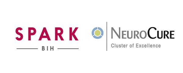 First successful NeuroCure / SPARK-BIH Call)