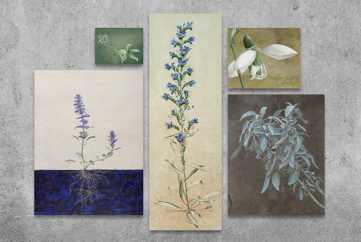 Collage: Die Arbeiten von Sylvia Peter