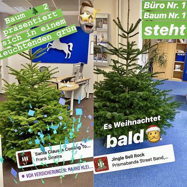 Weihnachtsbaumaktion