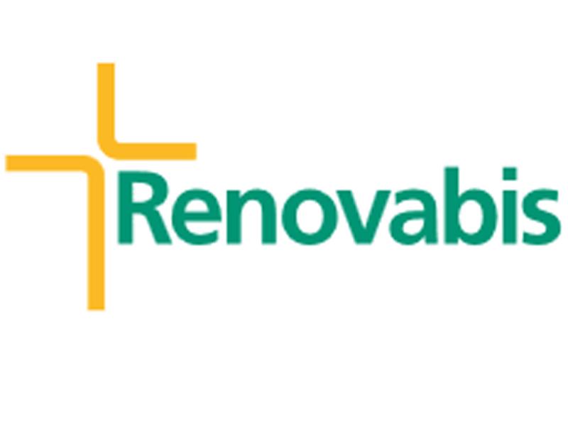 Logo Renovabis