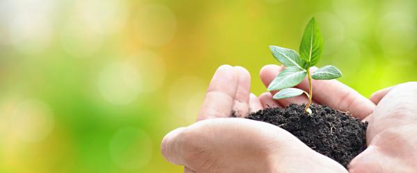Nachhaltigkeit Versicherung KS/AUXILIA