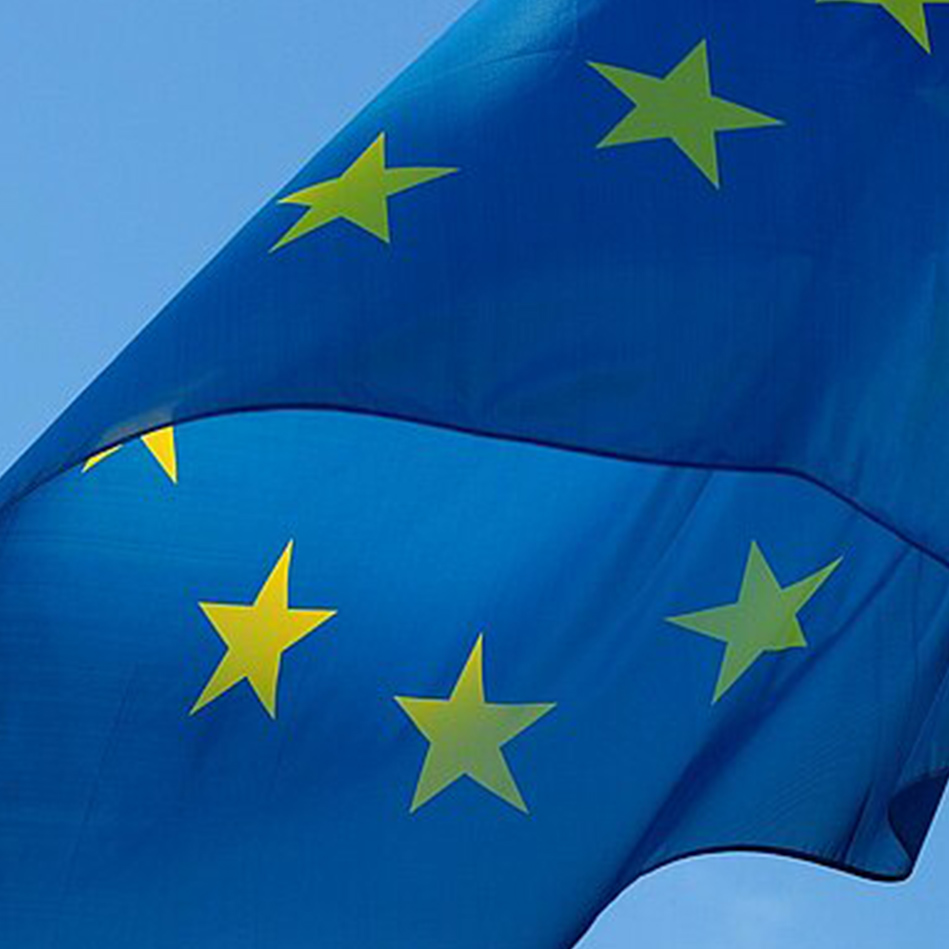 Report on the Future of Europe