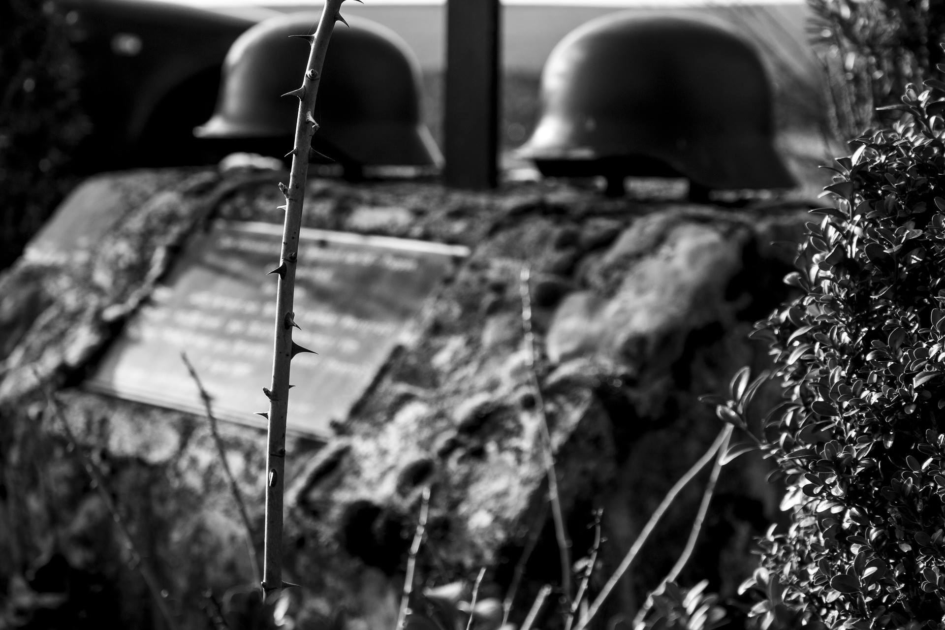 Geerbte Trauer - Transgenerationale Weitergabe von Kriegstraumata (2001-171)
