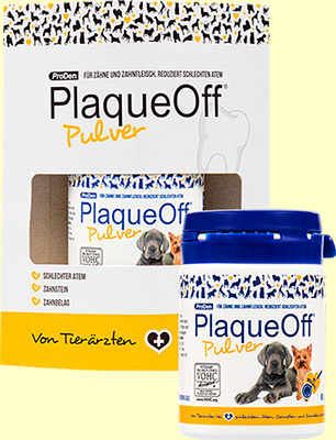 Plaque Off Hunde