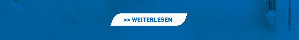 Pressebericht DE