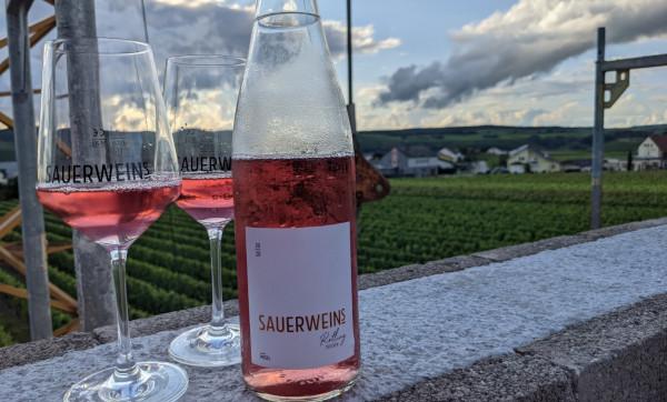 im Sonnenuntergang genießen wir ein Gläschen Rosé, Sauerweins Rotling Trocken mit Blick über die Weinberge und Palzem. Im Hintergrund ist Luxemburg zu sehen.