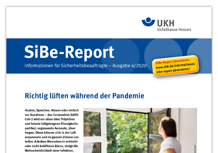 Titelseite SiBe-Report