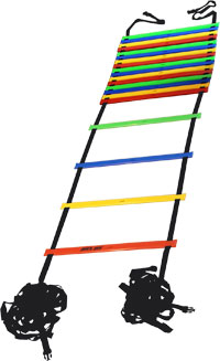 Pros Pro Agility Ladder 9m multicolor