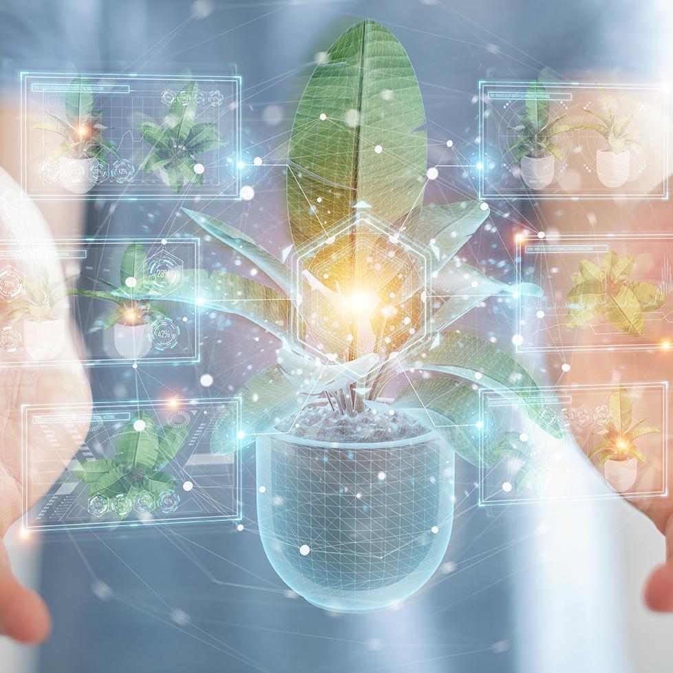 Ökologisch-soziale Marktwirtschaft