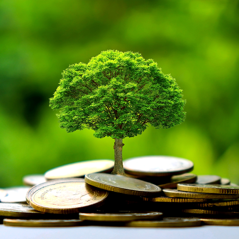 Kapital fürs Klima