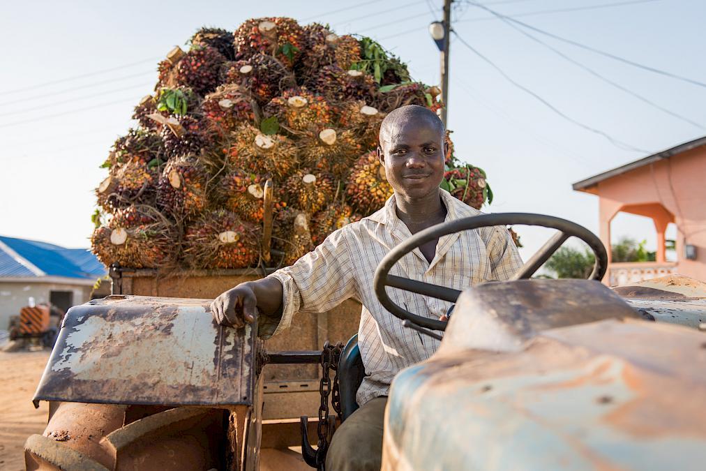 Palmöl von Serendipalm, Bild: Dr. Dronner's
