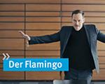 """kommmitmensch-Video """"Der Flamingo"""""""