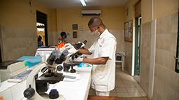 Medical staff in laboratory
