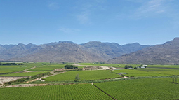 Agricultural land in south africa
