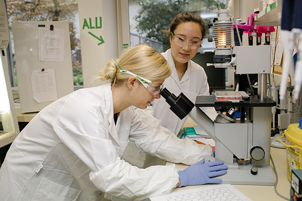 Two researchers working in a laboratory