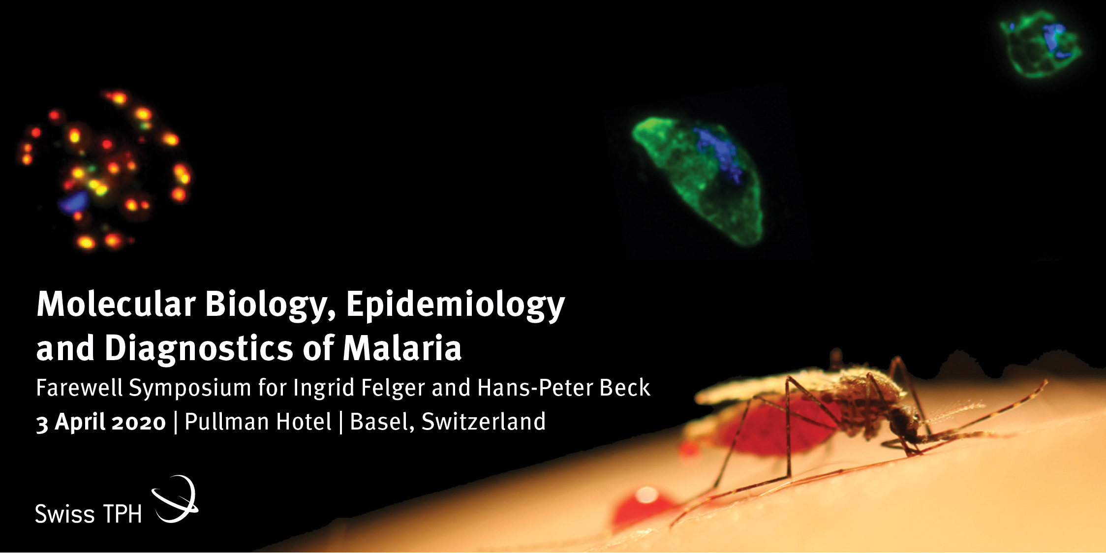 Swiss TPH Symposium on Molecular Biology, Epidemiology and Diagnostics of Malaria