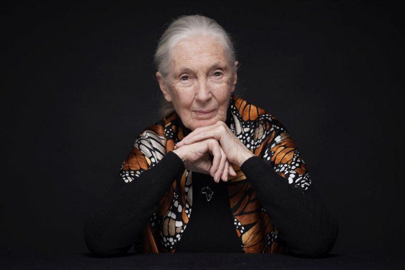 Jane Godell eröffnet Biofach
