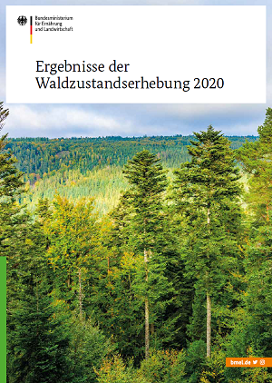 Broschürentitel: Ergebnisse der Waldzustandserhebung 2020