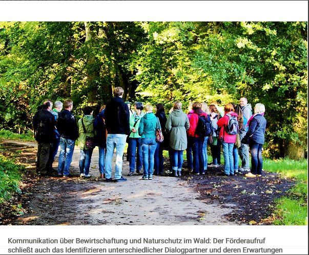 Förderaufruf BMEL Waldnaturschutz