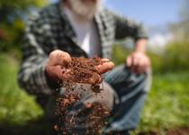 Mann lässt Erde aus der Hand fallen. / Foto: FluxFactory / E+ / Getty Images