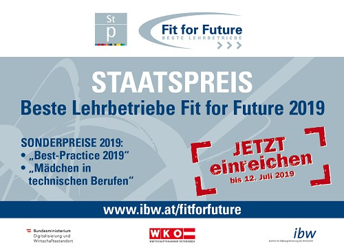 cover Fit for Future Staatspreis